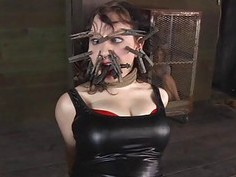 Caged hotty gets a whipping for her smooth wazoo